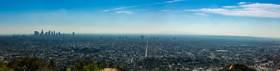 A view of Los Angeles from Griffith Park