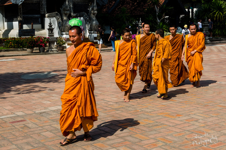 Monks of Chiang Mai