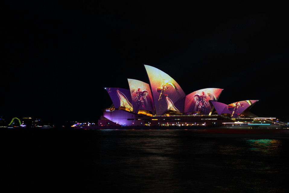 The OPera House during Vivid
