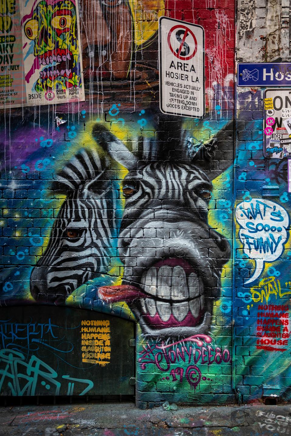 Melbourne Laneway street art