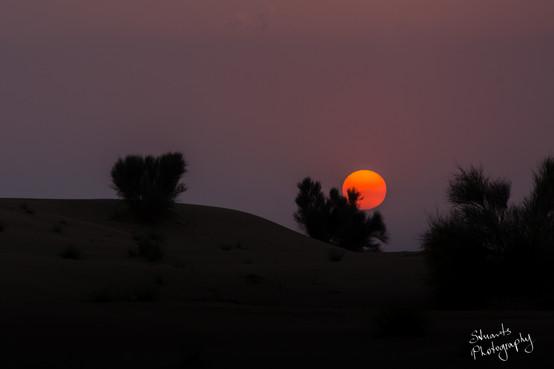 Desert sinking sunset