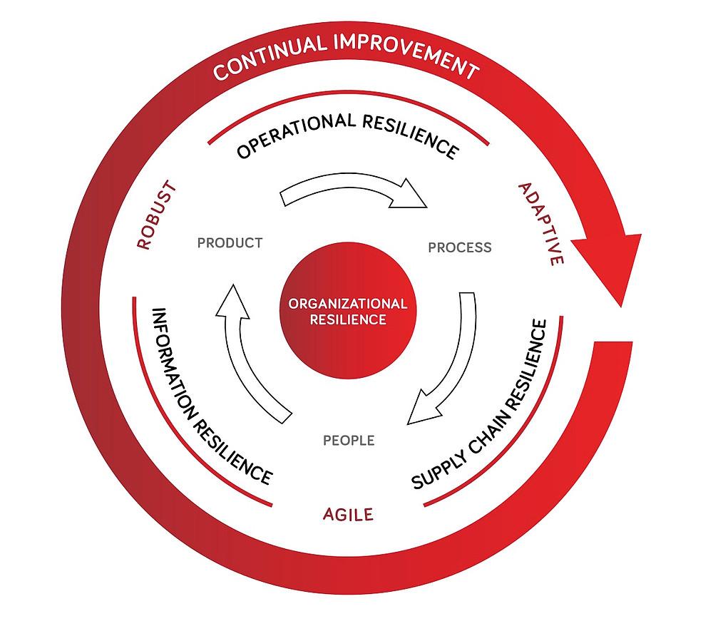 Organizational Resilience