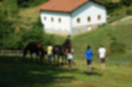 Caballos y niños. Experiencia familiar