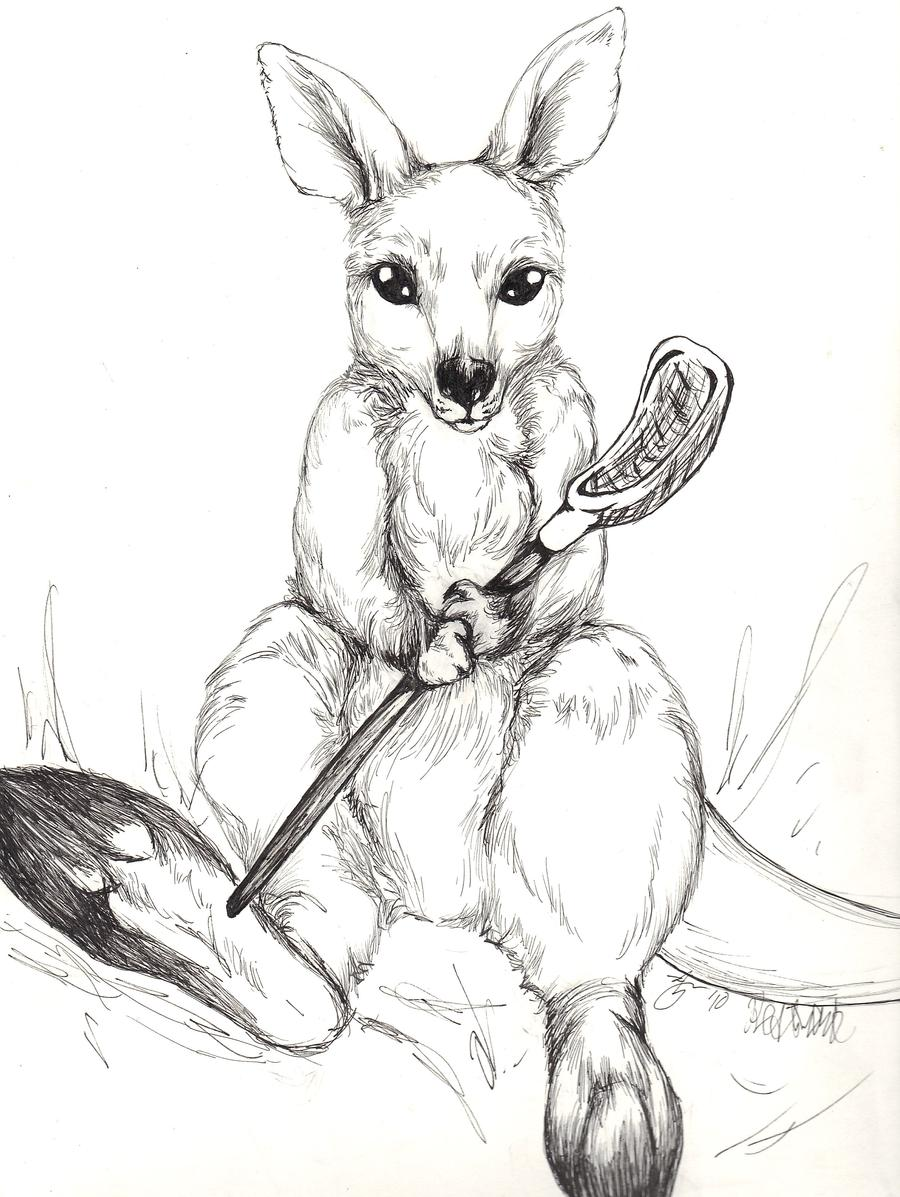 Wallaby Playing Lacrosse