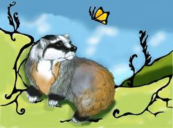Introducing Badger