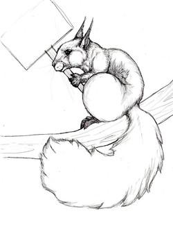 Activist Squirrel