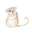 Mouse Watercolor (1)_edited.png