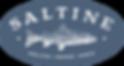 SALTINE_negColor_logo.png