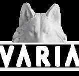 Varia_Negative-2.png