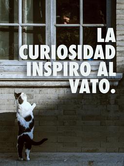 curiosidad.png
