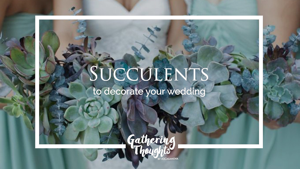 Succulents to decorate your wedding - Gathering Thoughts