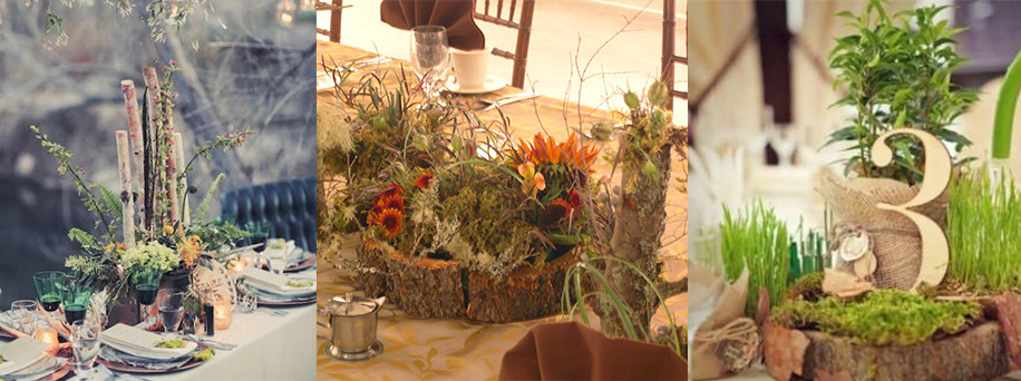 Forest centerpieces - Gathering thoughts
