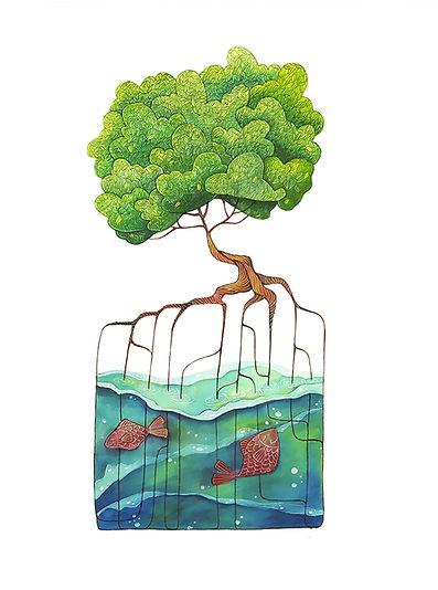 albero Le Mangrovie foglie gialle in bas