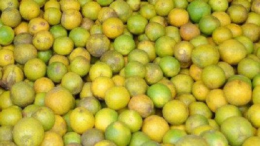 Naranja Ecuatoriana