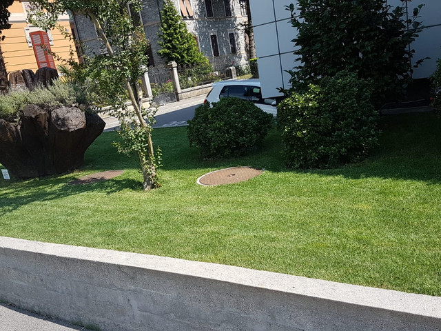 Costruzione giardino