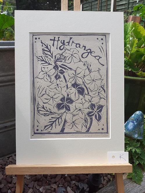Hydrangea Lino Print