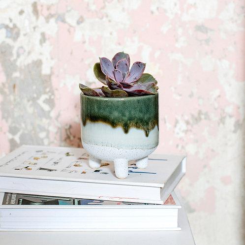 Small green ombre planter