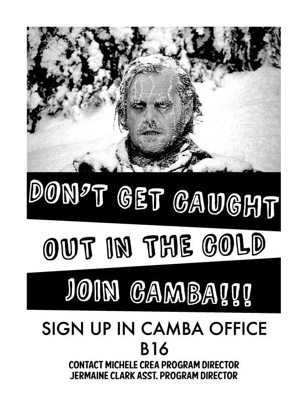 Camba Flyer