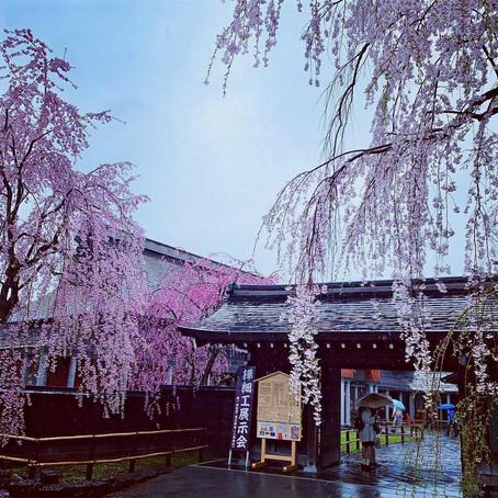 Sendai and Kakunodate, Japan