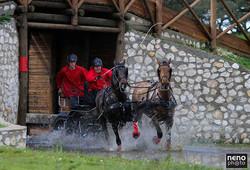 Desporto Equitação