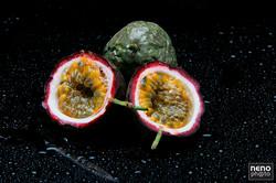 Estúdio Fruta