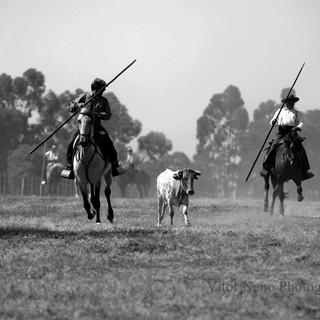 Fotojornalismo Vitor Neno32.JPG
