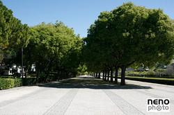 Lisboa 3545