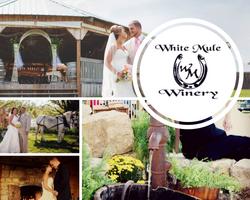 Black and White Wedding Photo Collage