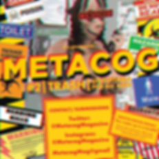 Metacog Magazine issue 2