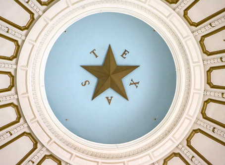 Executive Director's Column:  86th TX Legislative Session Review