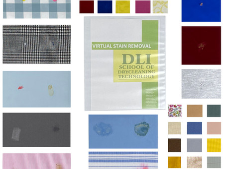 DLI Opens New Era in Professional Training with All-Virtual Stain Removal Course