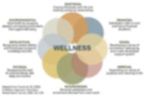 Circle of wellness.JPG
