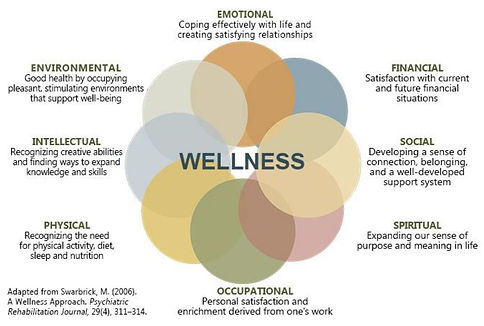 Circle of wellness.JPG