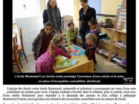 Les projets de l'école des Souris Vertes