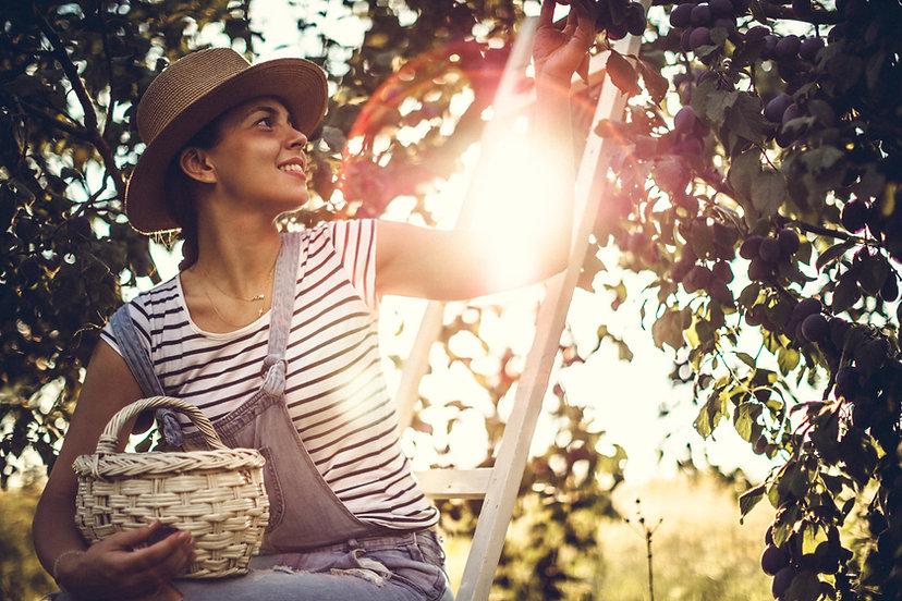 Donna che raccoglie frutta