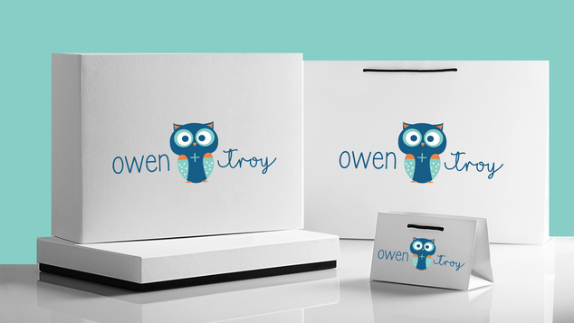 owen and troy boxes.png