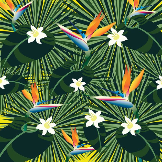 birdofparadisepattern-01.png