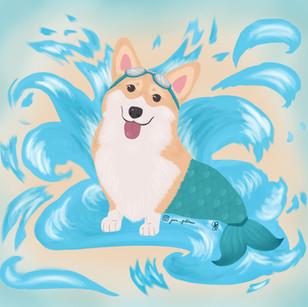 Splash Corgi Mermaid