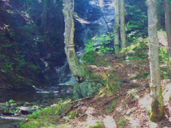 Our tallest waterfall (2 stories?)
