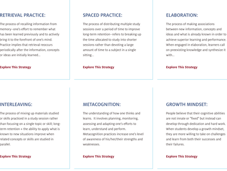 Pivotal Pedagogy & Evidence-Based Practices