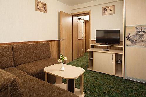 Семейный 2-х комнатный  - четырехместное стандартное размещение