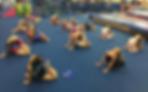 World Elite Gymnastics Ontario Rhythmic