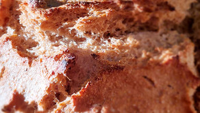 No knead Rustic Red Fife Bread