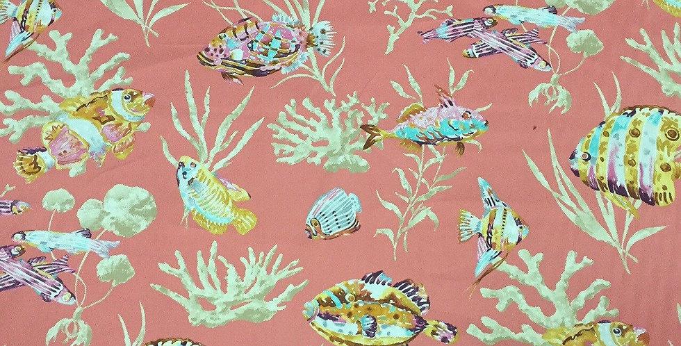 Coral Red Snapper Fishermen Find