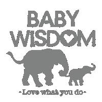 Baby Wisdom - Love what you do