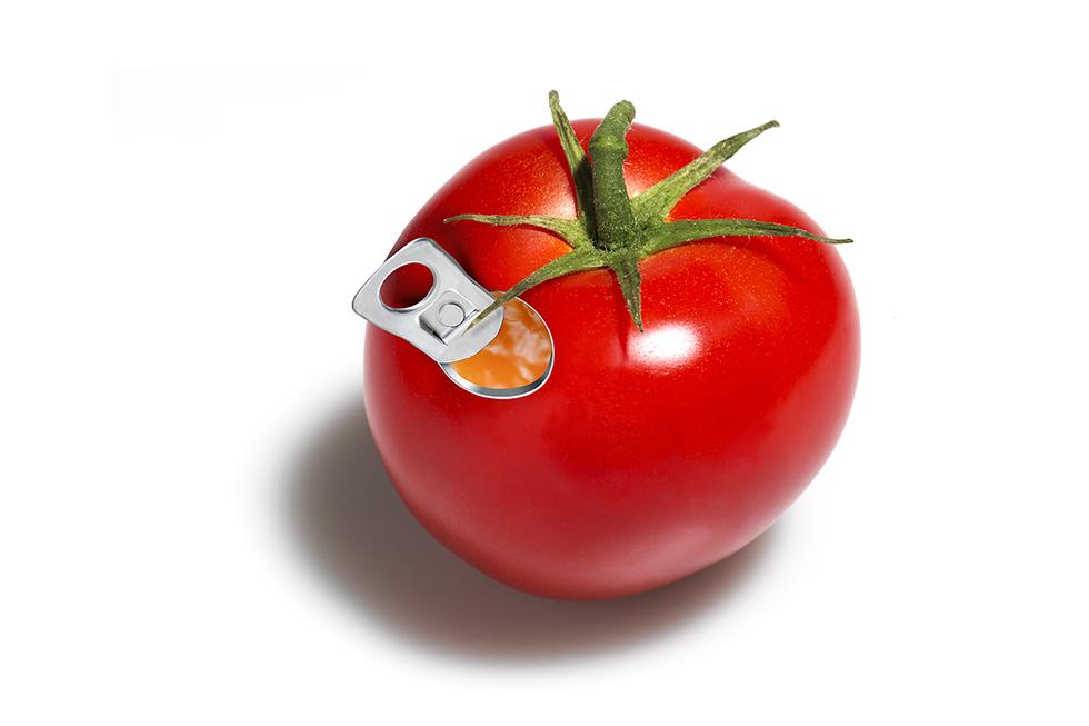 10942_tomate-web.jpg