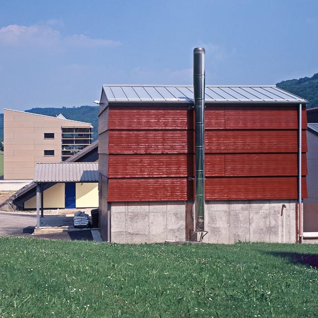 Primaerschule Born