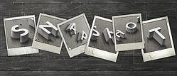 Snapshot+banner+for+website.jpg