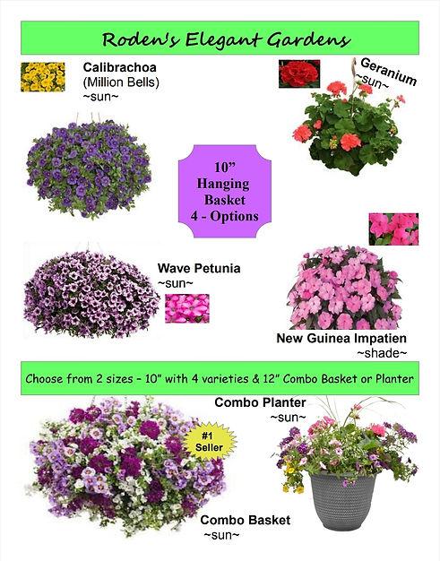 Roden's Flowers.jpg
