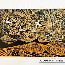 Coded Storm - Maria Merridan.png